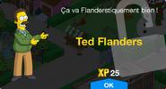 DébloTedFlanders
