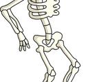 Squelette d'Halloween