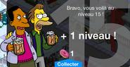 Niveau 15