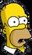 Homer Confus