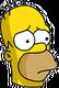 Ninja Homer Triste