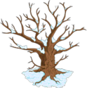 Esprit du vieil arbre.png