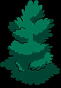 Arbuste haut (1)