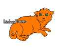 Flamme chaton
