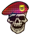 Decal-Drill Sergeant P.png