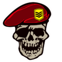 Decal-Drill Sergeant.png