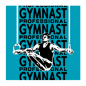 Professional Gymnast.png