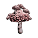 47 False Brainshroom 1.png