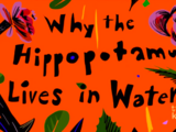 Why the Hippopotamus Lives in Water