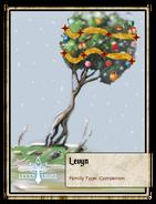 Levyn (seasonal)