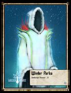 Winter Parka