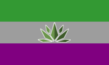 This flag as three stripes. The top is dark green, the middle is gray, and the bottom is purple. It has an image of a green plant in the centre.