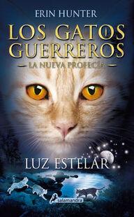 Première de couverture de Nuit étoilée en Espagnol