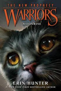 Warriors-NP2 Moonrise