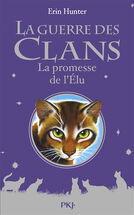 Premiere de couverture La promesse de l'Élu.jpg