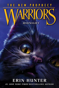 Warriors-NP1 Midnight