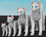 Customisation personnage - Pack géant- Edition idéale