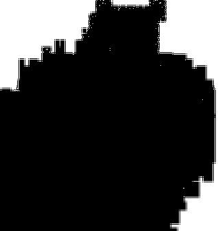 Patte de Grenouille