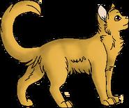 Lioneye