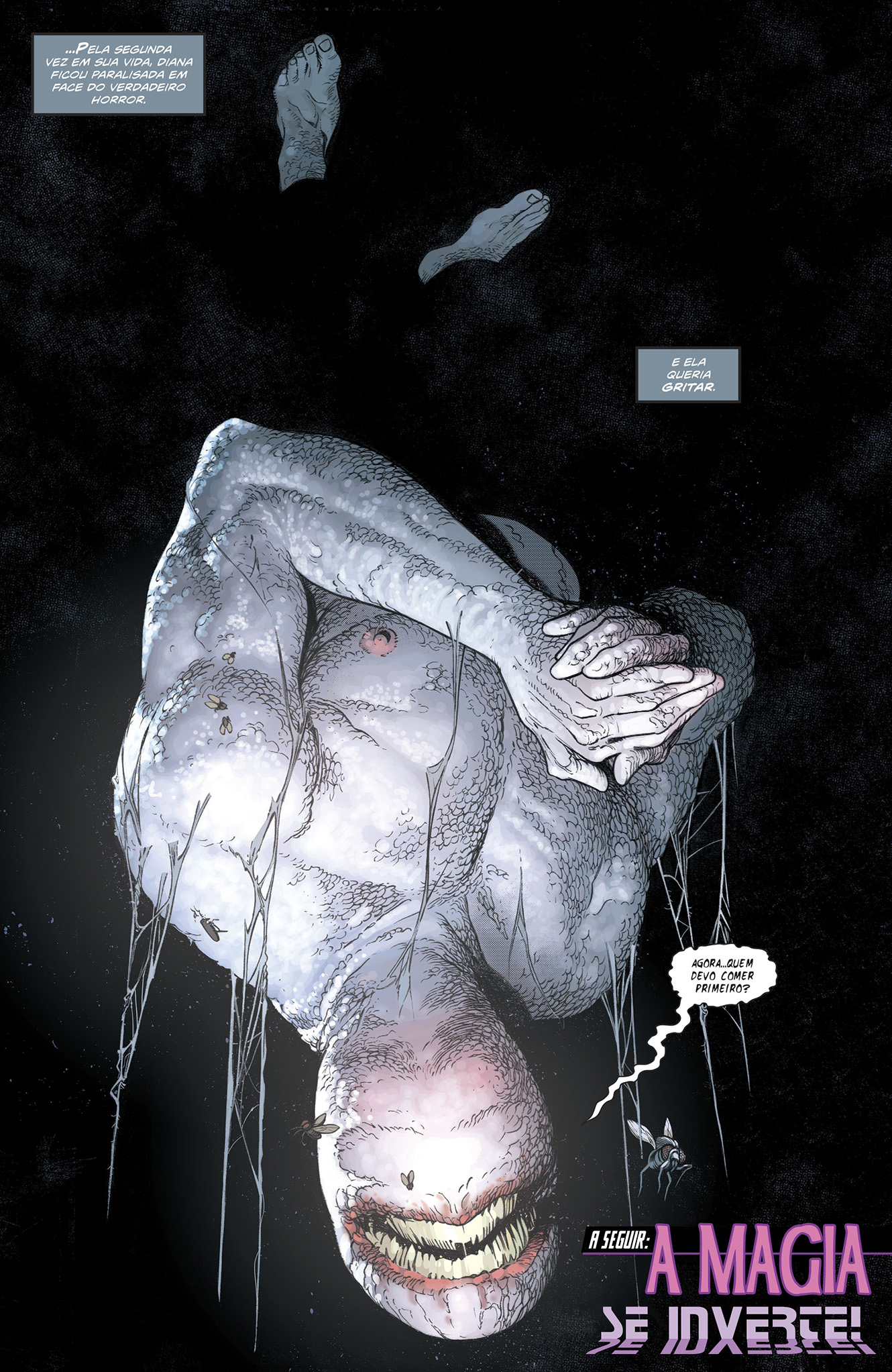 Homem-Invertido (DC Comics)