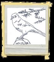 FotosLIS-Pássaro1