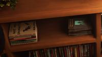 BtS AmberHouse Bookcase-closeup