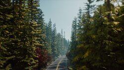 EP1 Roads Imagem24