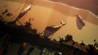 Anomalia Baleias
