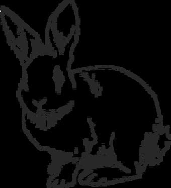 Easter Eggs Season 1 Life Is Strange Wiki Fandom