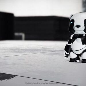 Jax the Panda Remember Me.jpg