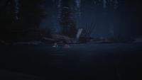 Drifters' Camp Lake (Night) 01