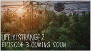 Life is Strange 2 - Episódio 3 - Em breve