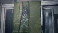 Piratetowel