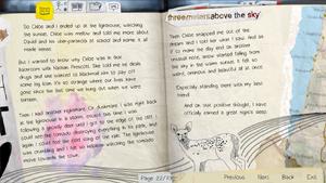 Diary-page22