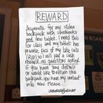 Stolen Cat Pics Ad Swimming Pool.png