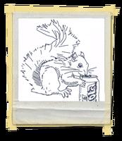 FotosLIS-Esquilo1