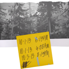 Locationclues-forest.png