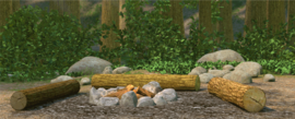 Location-campgrounds.png