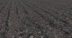 Gras soil bulk goods.png