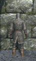 Light chainmail armor back.jpg