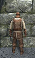 Regular leather armor back.jpg