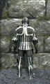 Royal full plate armor back.jpg