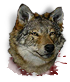 Wolf head.png