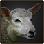 Sheep stable.png