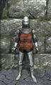 Half plate armor front.jpg
