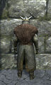 Royal chainmail armor back.jpg