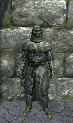 Heavy chainmail armor front.jpg