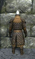 Royal padded armor back.jpg
