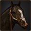 Stallion stable.png
