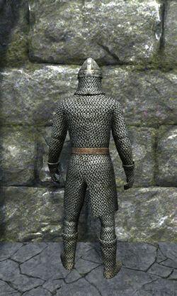 Regular chainmail armor back.jpg